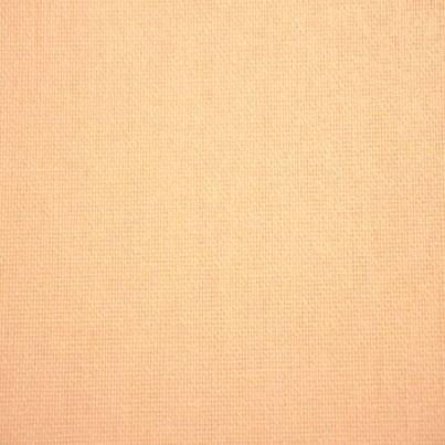 Panneaux Japonais Filtrant Beige 4205